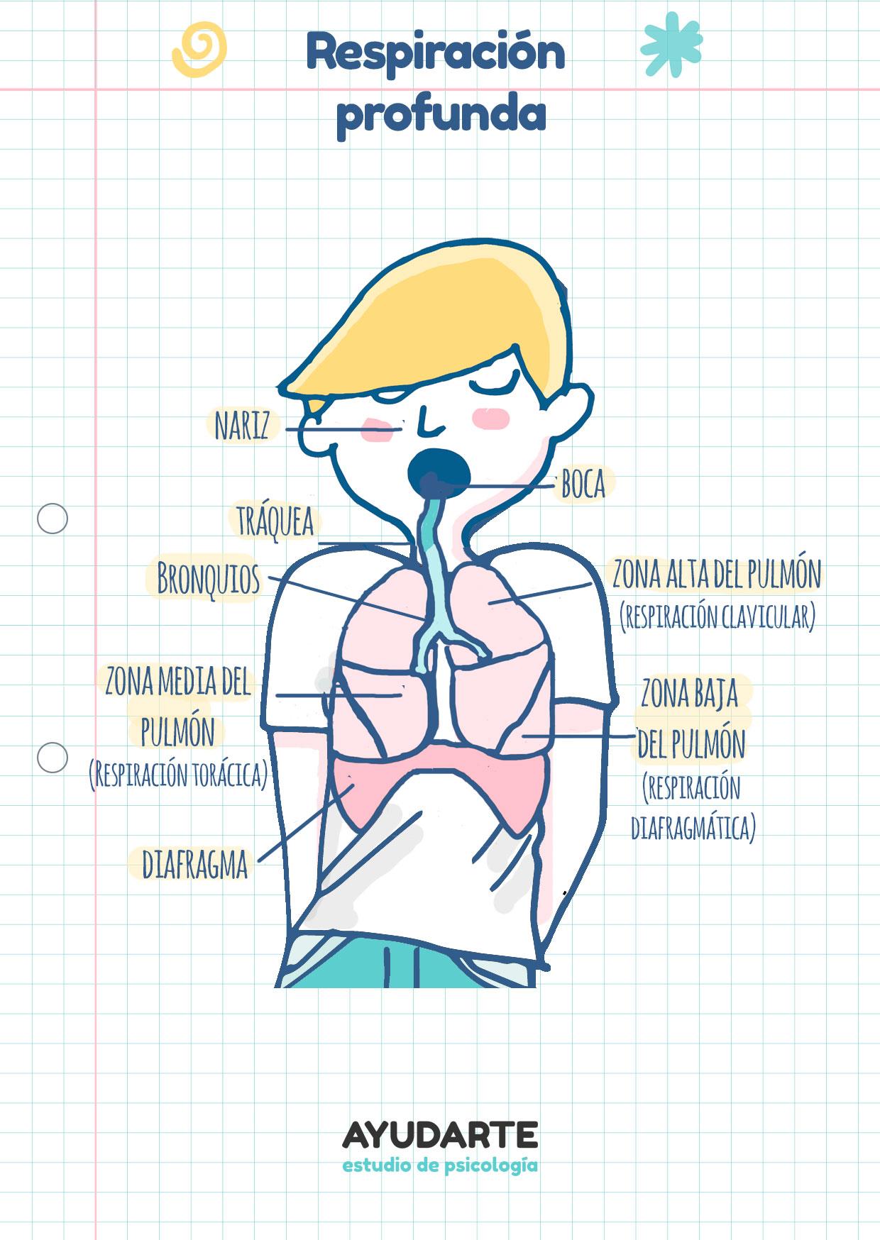 ejercicios respiración para niños